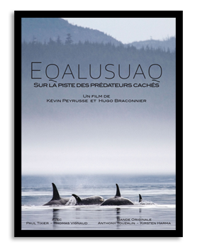 equalusuaq, kevin, peyrusse, hugo, braconnier, association sedna, festival explorimages, 2016, saumon, alaska, biologistes marins, orques, nice, france