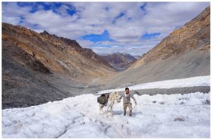 Himalaya la marche au dessus, explorimages, film