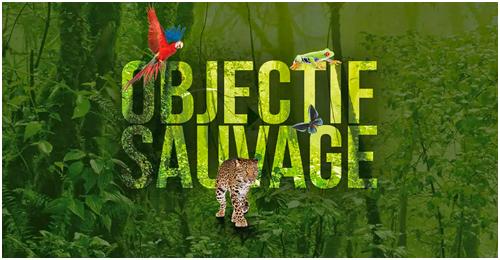 Objectif Sauvage, festival explorimages nice, cannes film